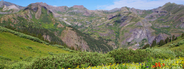 Alpine Meadow near the Continental Divide in the Weminuche wilderness
